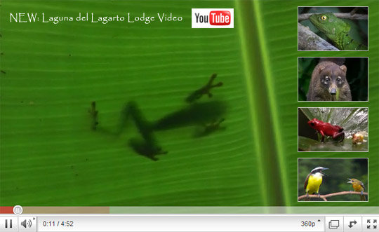 Laguna del Lagarto Lodge Video on Youtube